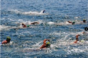 6,5 km zwemmen….